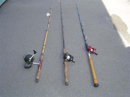 Saltwater fishing rods poles download lengkap for Bass fishing rod selection guide